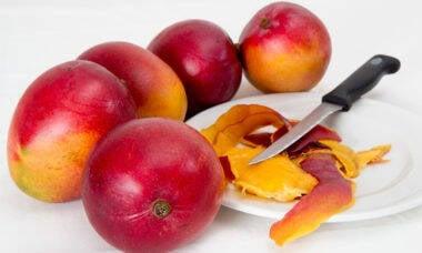 frutas da época agosto