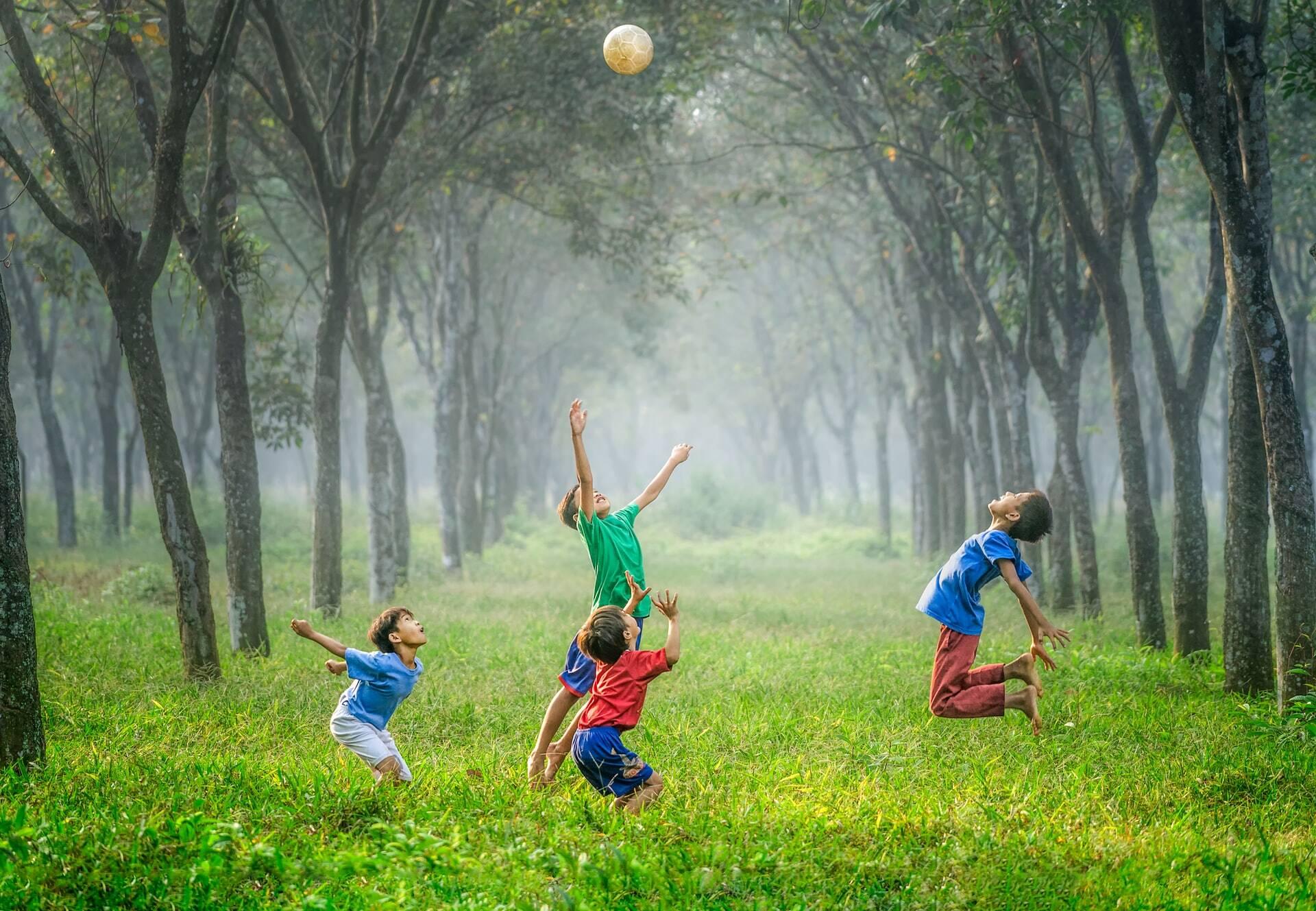 Brincar na natureza melhora imunidade das crianças em curto prazo